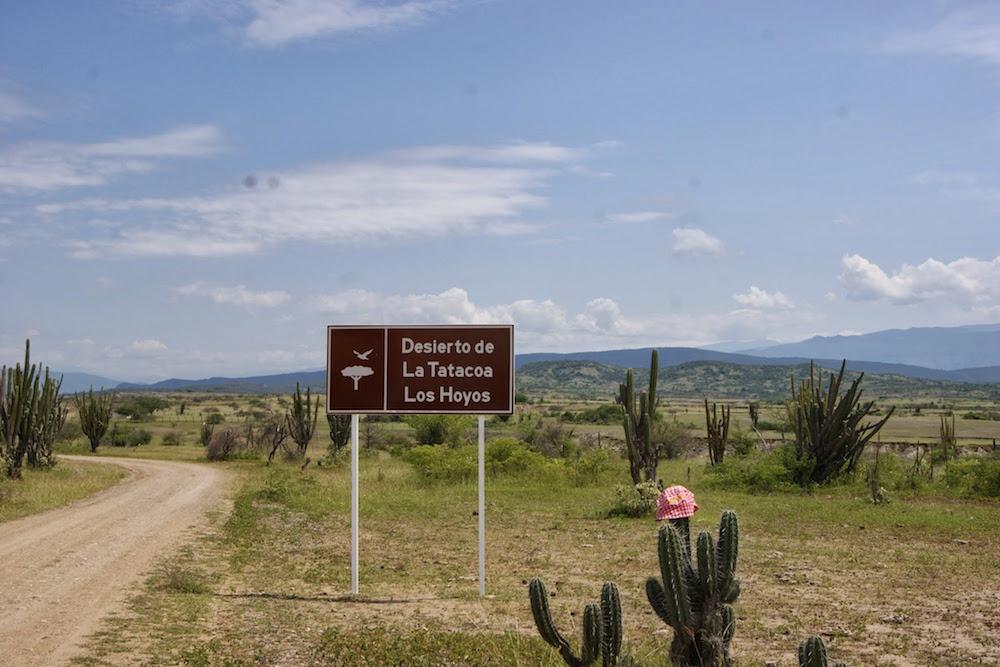 Los Hoyos Désert de Tatacoa Colombie