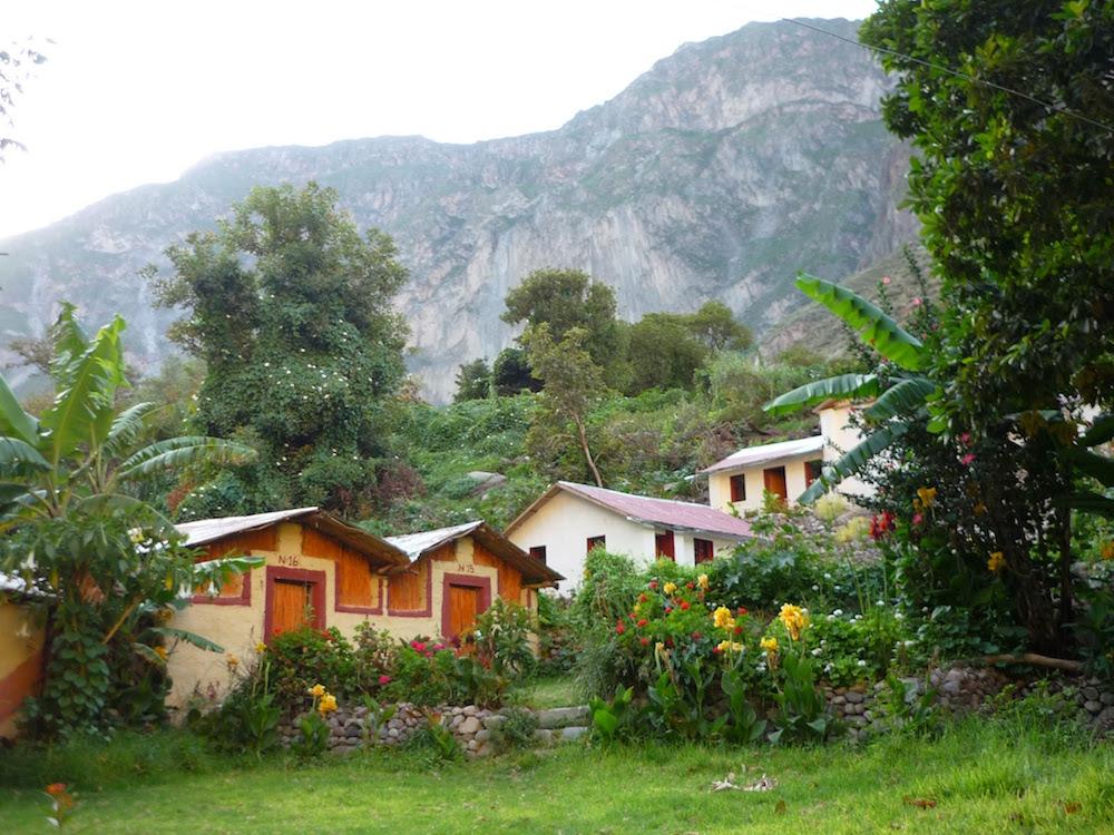 chambres en bambou oasis Sengalle Canyon COlca Pérou