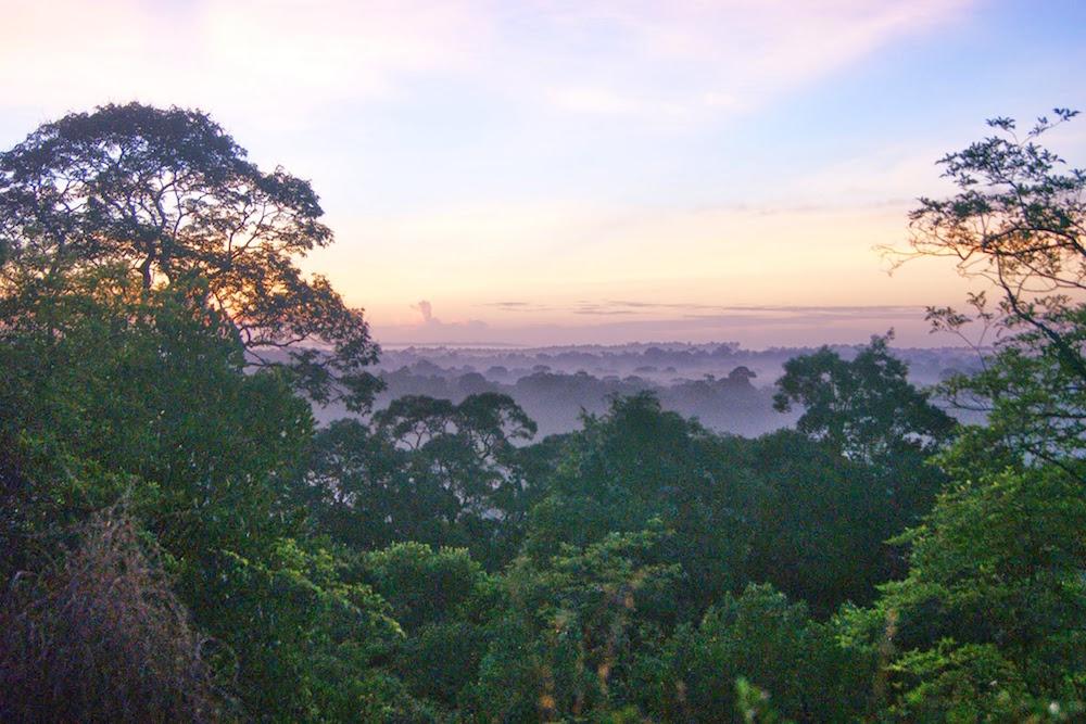 lever de soleil sur la jungle, savane roches Guyane