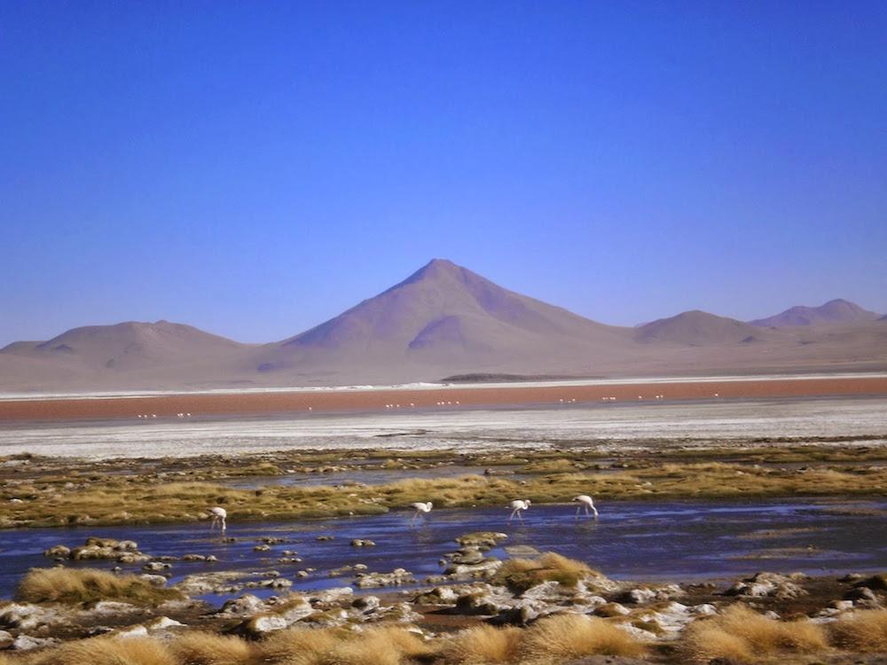 laguna colorada solivie sud lipez