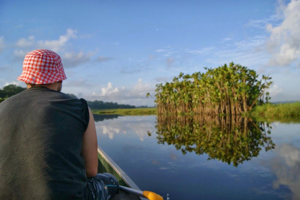 reflets sur les marais de Kaw en Guyane Française
