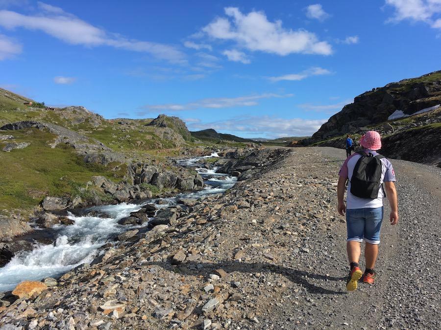 Randonnée à Hammerfest, Société des ours Polaires et Steacks de baleine