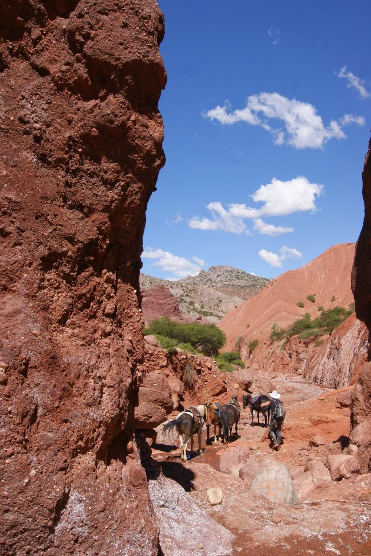 desert de tupiza en bolivie à cheval