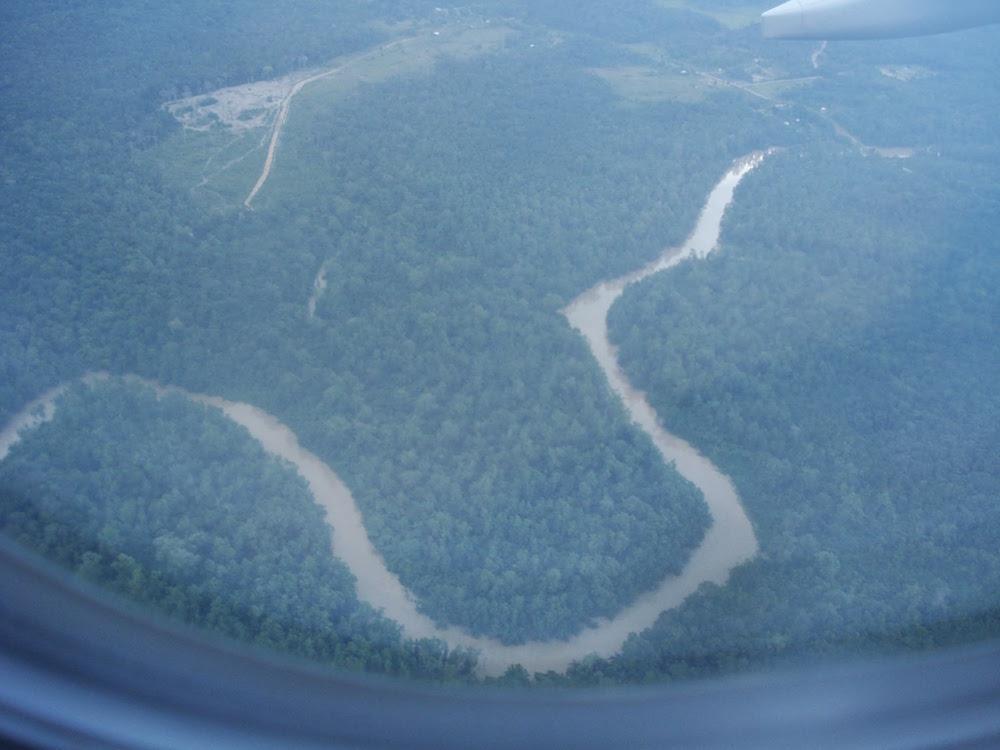 vue sur l'Amazonie arrivée en Guyane
