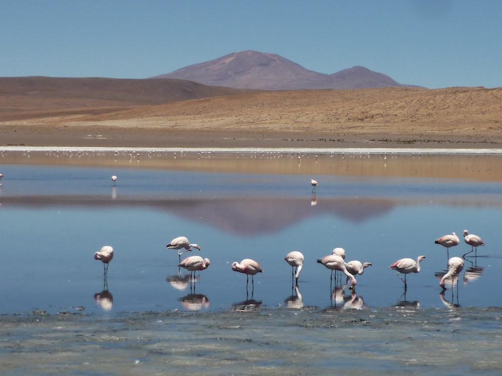 laguna canapa - lacs colorés