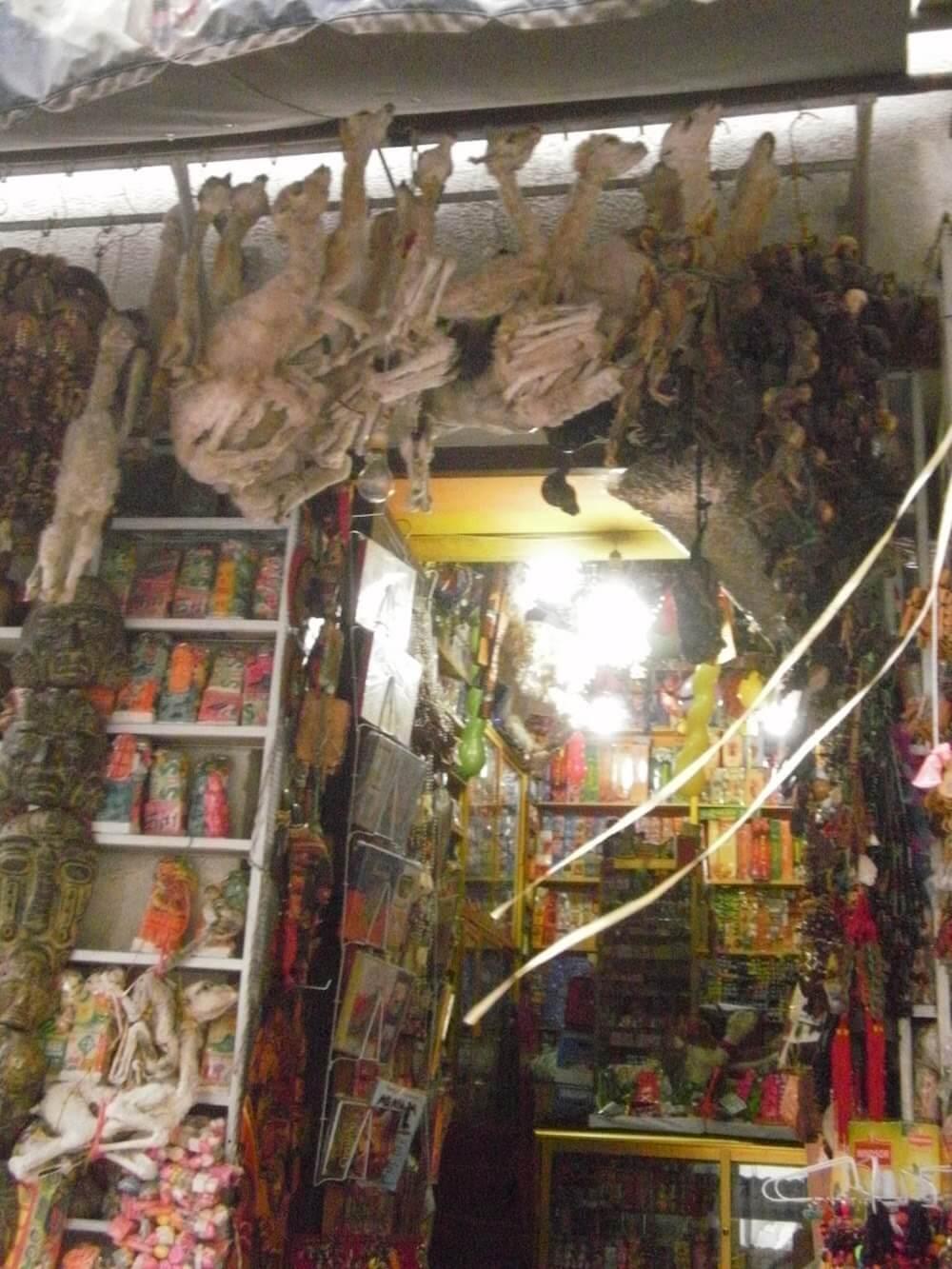foetus de lama marché des sorcières la paz bolivie