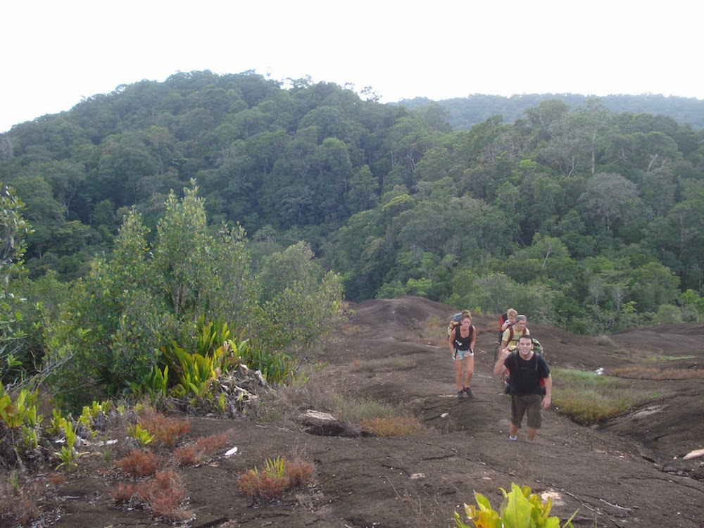 excursion aux savane roches en Guyane