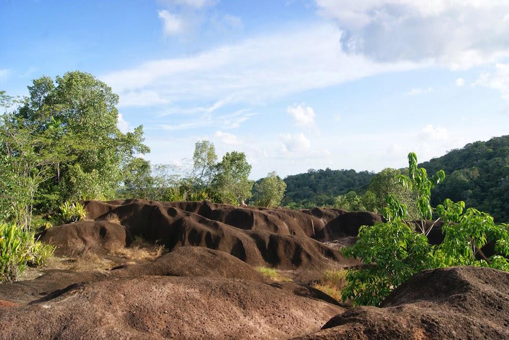savane roches en guyane