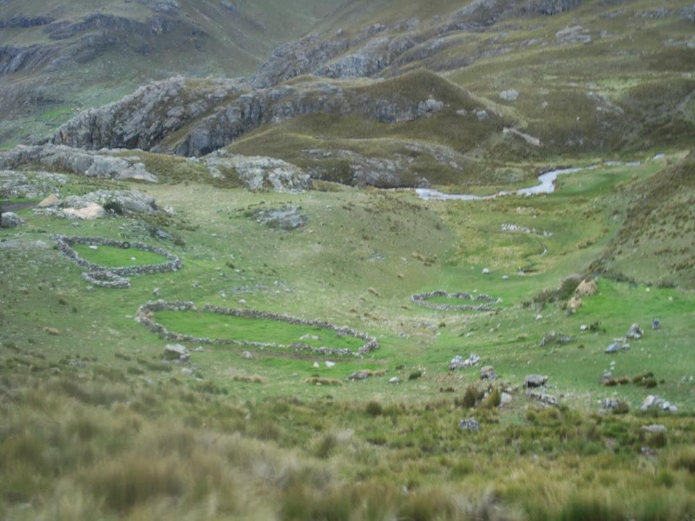 habitations de berger parc de huascaran