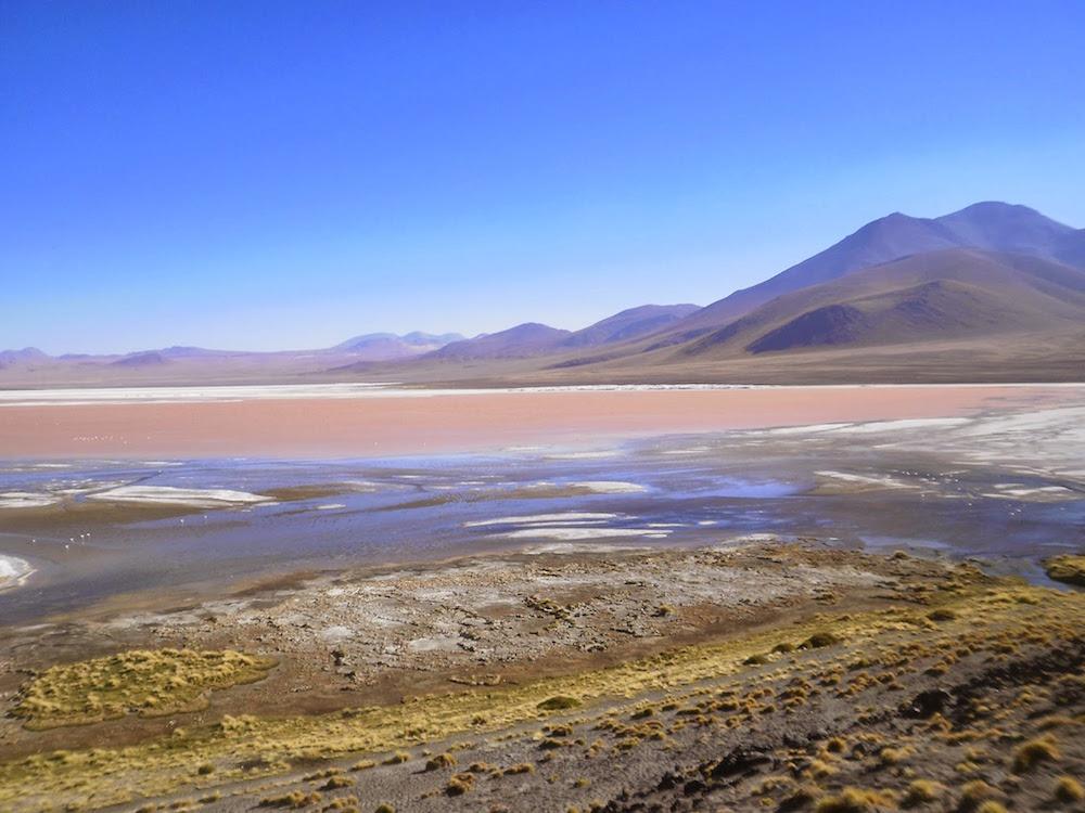 laguna colorada sud lipez potosi - lacs colorés bolivie