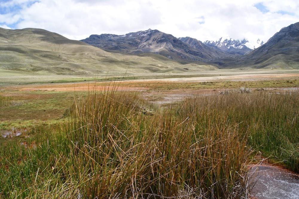 Source d'eau gazeuse parc de huascaran Pérou