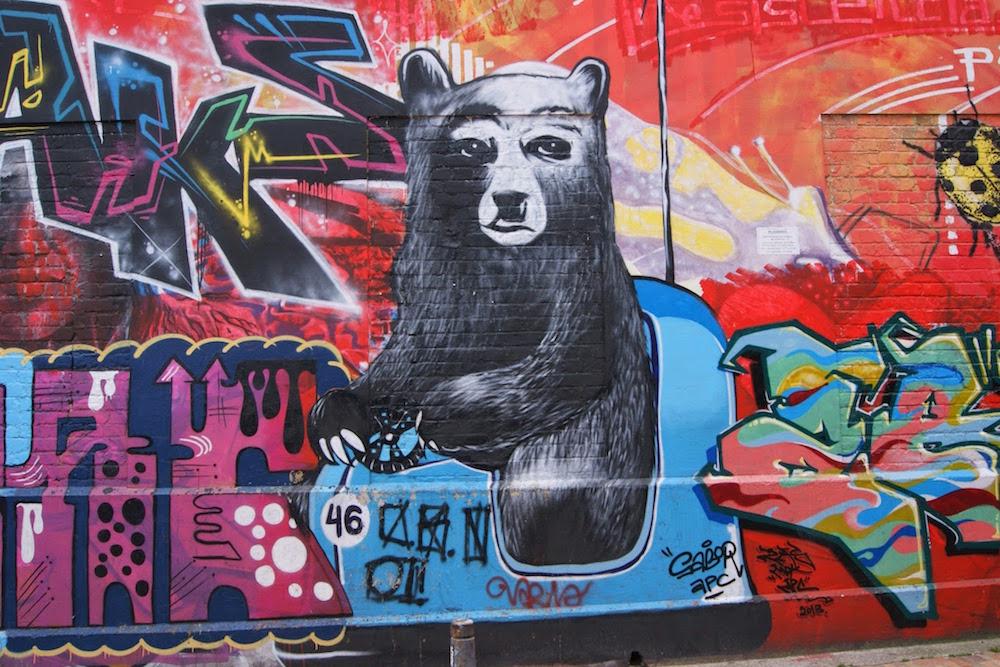ours en auto tamponneuse street art Bogota Colombie